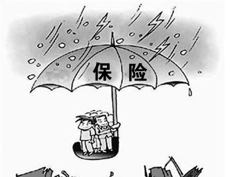 定期寿险保险公司靠什么赚钱
