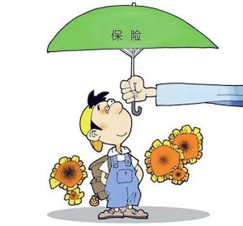 定期寿险保险期限是多久 瑞泰瑞和定期寿险有哪些优势