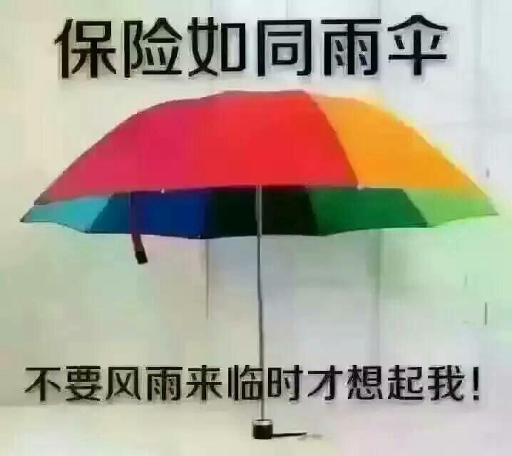 中国人民寿险保险公司怎么样 能用人寿保险的保单贷款吗