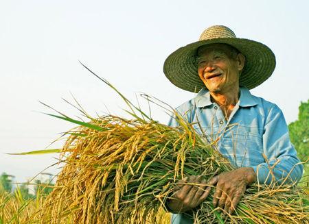 农业保险可以分为哪几类?怎么定义的?