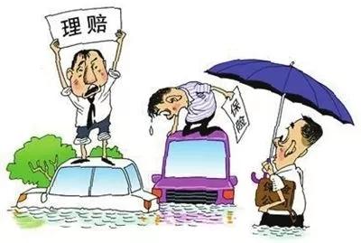 机动车损失险_确定机动车辆损失险的保险保额的三种方式_米保险