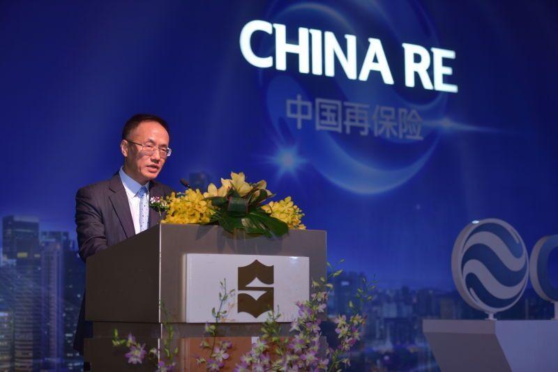发展中的中国再保险公司是什么意思?「解决方法」
