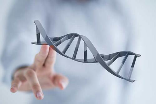 中国人寿女性防癌险能带来哪些好处?值得买吗?